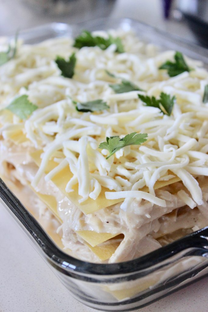 alfredo chicken lasagna getting ready to be baked