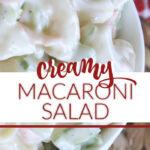 creamy cold pasta salad