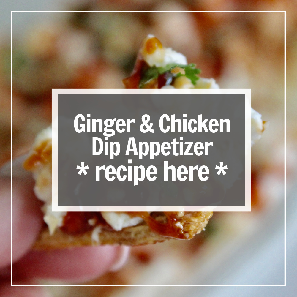 ginger and chicken dip